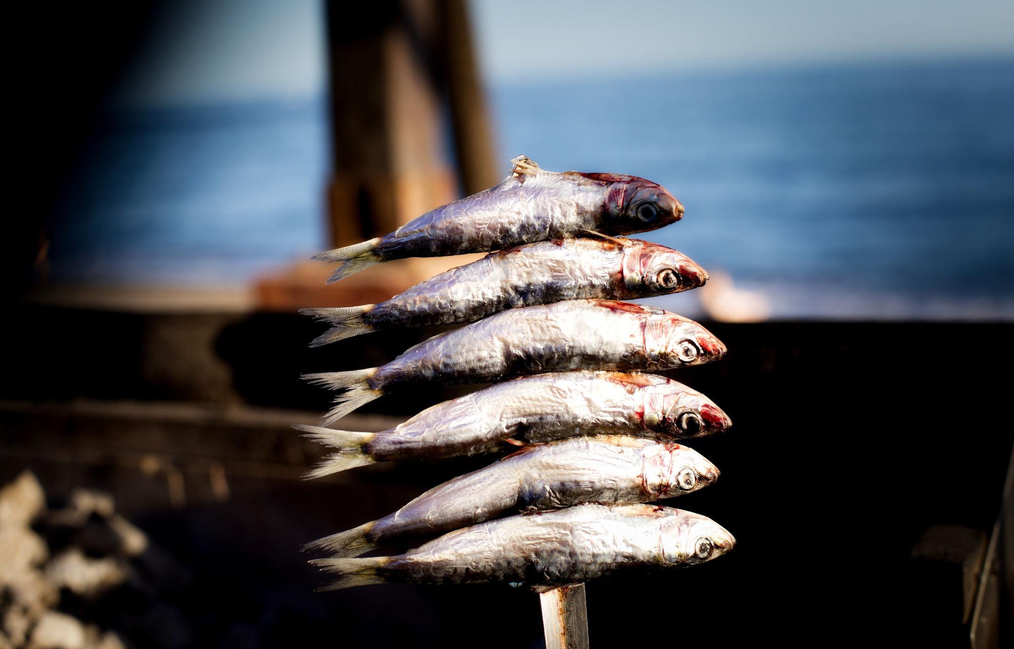Espetos de Sardines