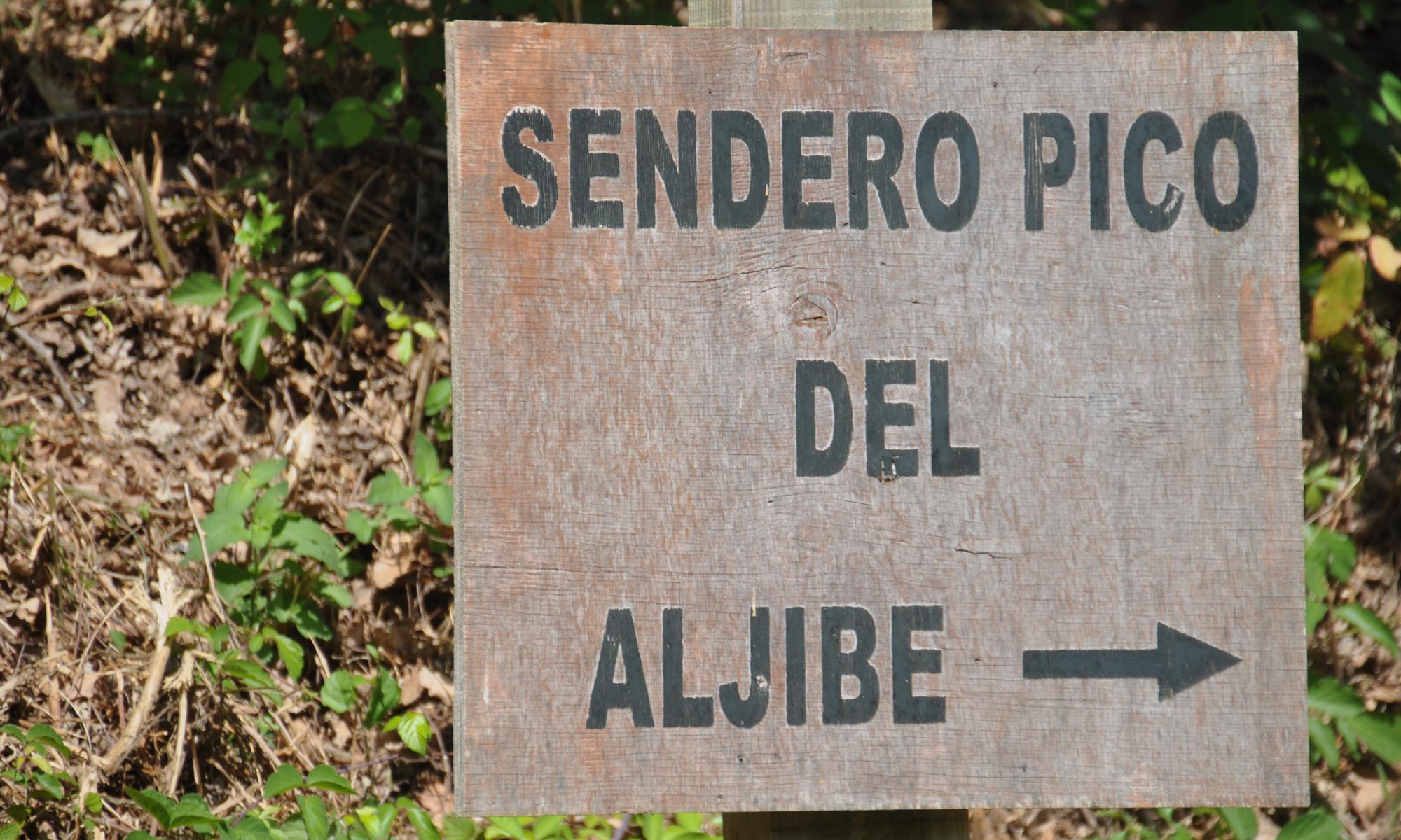 Pico del Aljibe