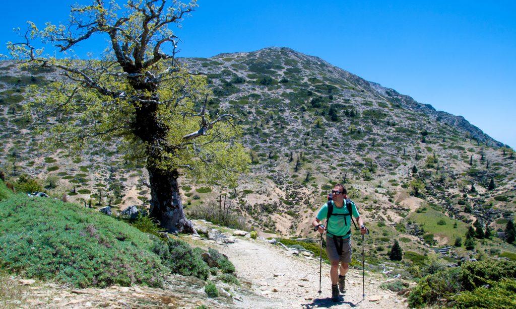 Wandelgebied Sierra de Las Nieves
