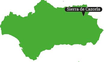 Locator Sierra de Cazorla